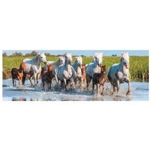 "Dino (39326) - ""Horses"" - 150 piezas"