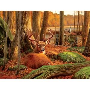 """SunsOut (50133) - """"Where Sleeping Deer Lie"""" - 500 piezas"""
