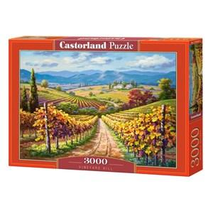 "Castorland (300587) - ""Vineyard hill"" - 3000 piezas"