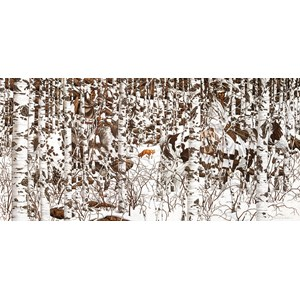 "SunsOut (74415) - Bev Doolittle: ""Woodland Encounter"" - 1000 piezas"