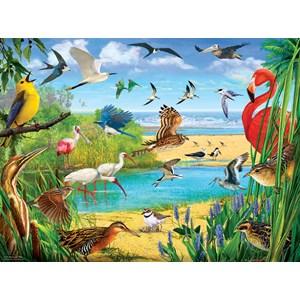 """SunsOut (70028) - R. Christopher Vest: """"Florida Birds"""" - 1000 piezas"""