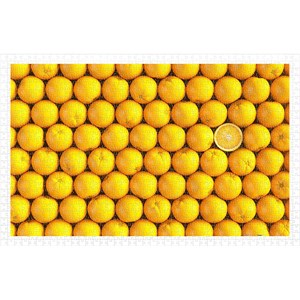 "Pintoo (h1992) - ""Fruits, Orange"" - 1000 piezas"