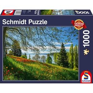 "Schmidt Spiele (58967) - ""Tulips Field, Mainau Island"" - 1000 piezas"