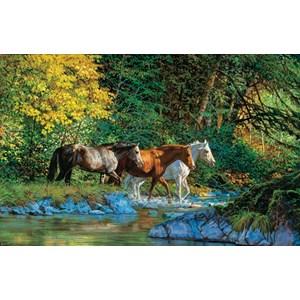 """SunsOut (44855) - Chris Cummings: """"Bear Creek Crossing"""" - 1000 piezas"""