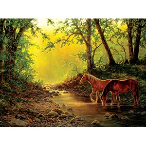 "SunsOut (48851) - Chris Cummings: ""Still Water Setting"" - 1000 piezas"
