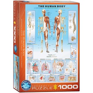 "Eurographics (6000-1000) - ""The Human Body"" - 1000 piezas"