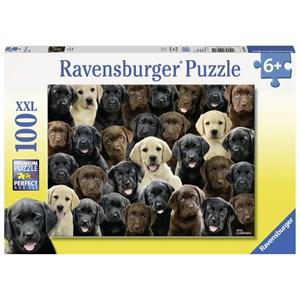 "Ravensburger (10971) - Greg Cuddiford: ""Labradors"" - 100 piezas"