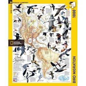 "New York Puzzle Co (NPZNG1715) - ""Bird Migration"" - 1000 piezas"