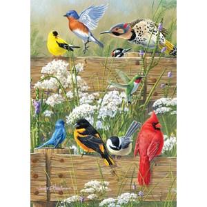 "Buffalo Games (2496) - James Hautman: ""Songbird Menagerie"" - 300 piezas"