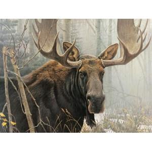 """Cobble Hill (52080) - Robert Bateman: """"Bull Moose"""" - 500 piezas"""