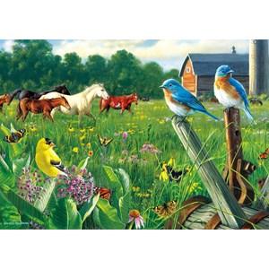 "Buffalo Games (2533) - Hautman Brothers: ""Country Meadow"" - 300 piezas"