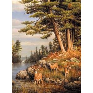"Buffalo Games (11168) - James Hautman: ""Deer and Pines"" - 1000 piezas"