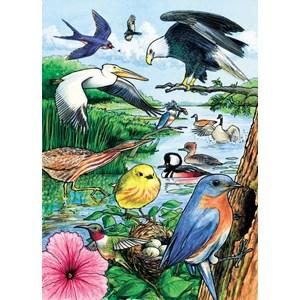"""Cobble Hill (58809) - """"North American Birds"""" - 35 piezas"""