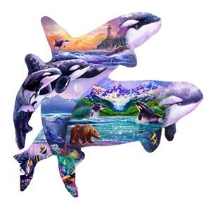 """SunsOut (96186) - Steve Sundram: """"Orca Habitat"""" - 1000 piezas"""