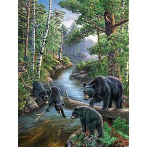 """SunsOut (28428) - James Meger: """"Bear Pause"""" - 500 piezas"""