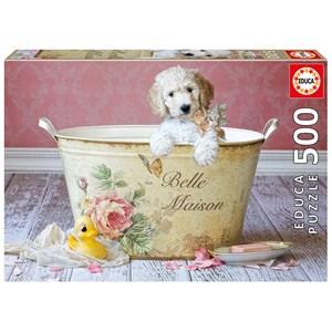 "Educa (16736) - Lisa Jane: ""Belle Maison"" - 500 piezas"